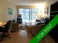 North Vancouver Condo for rent:  1 bedroom  (Listed 2020-12-15)